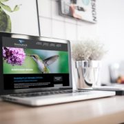 website design company mobility plus